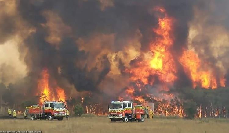 Пожарные машины на фоне огня лесного пожара, Австралия, декабрь 2019 г.