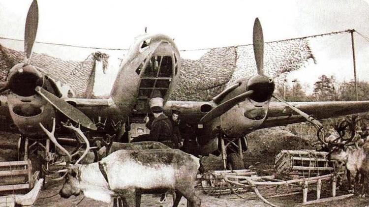 В ноябре 1944 года Карельский фронт расформировали. К тому времени из десятитысячного стада уцелело чуть более тысячи оленей, остальные погибли. Война для оленей закончилась. Но боевой путь ижемцев продолжался.