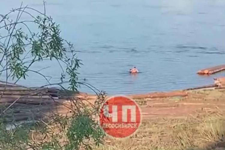Вроде бы близко от берега, но для ребенка глубоко. Фото: ЧП - Лесосибирск.
