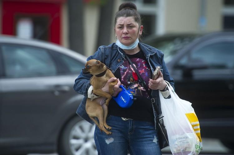 Правило двух километров распространяется и на владельцев домашних животных.