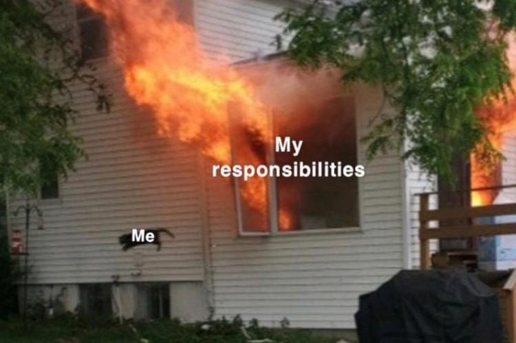Я - мои обязательства. Фото: соцсети.