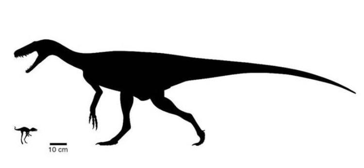 Динозавр=малютка соседствовал с куда более крупными чудовищами и старался им не попадаться.