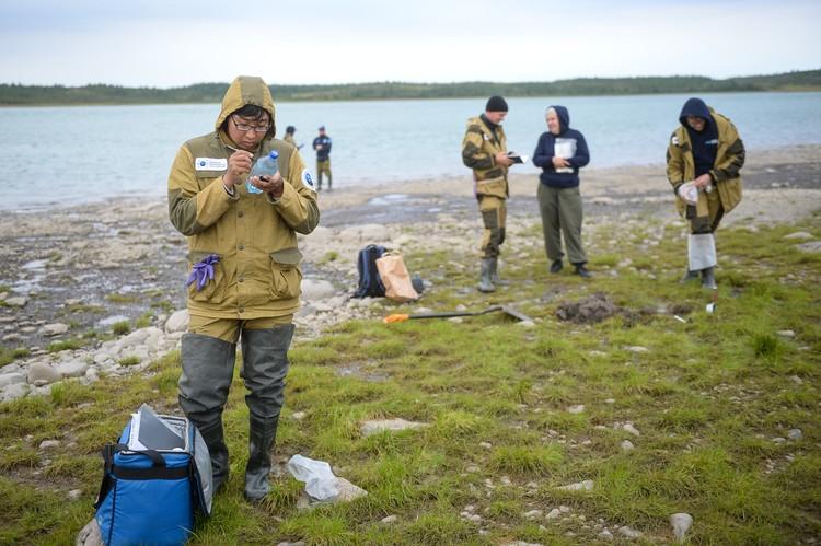 Арктическую зону исследовали 5 отрядов: специалисты по наземным экосистемам, гидробиологи, геофизики, геохронологи и мерзлотоведы