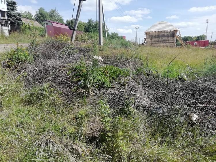 Зачастую в СНТ образуются стихийные свалки прямо на полях, потому что председатели не озаботились вывозом мусора
