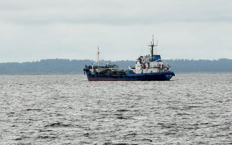 Через четыре года в Усть-Луге откроется крупнейший в Европе морской порт. Фото предоставлено пресс-службой администрации Ленобласти.