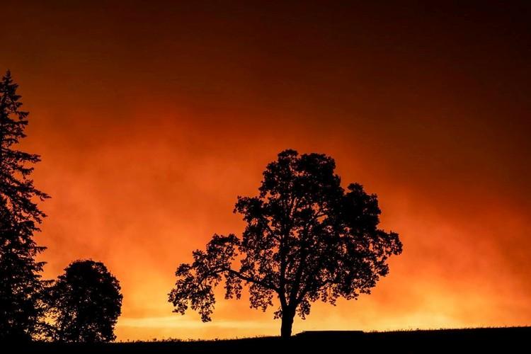 В Орегоне красная мгла опустилась на округ Мэрион, где накануне эвакуировали жителей четырех городов
