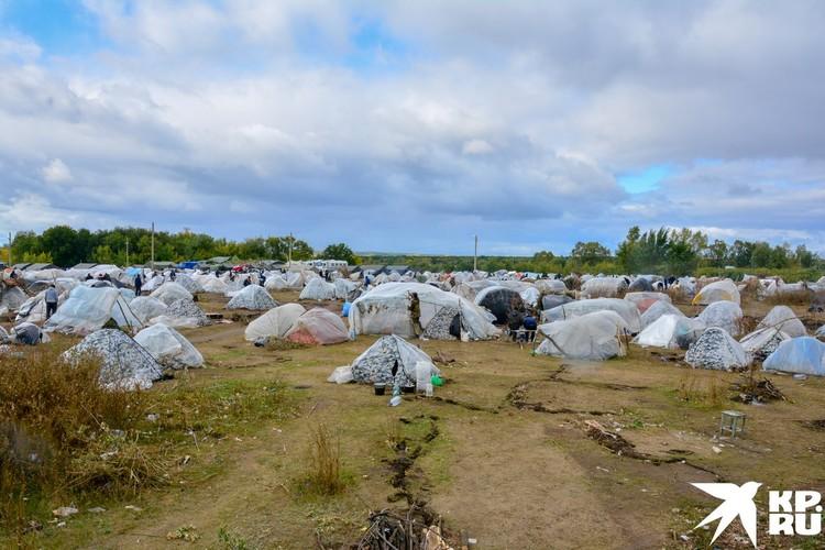 Палаточный лагерь огромный, чем-то напоминает Грушинский фестиваль.