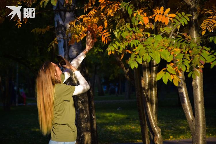 Уже через неделю желтые и красные листочки может сдуть с деревьев.