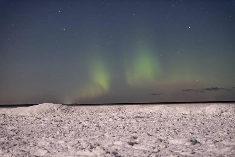 Чаще всего его наблюдают осенью и зимой / Фото: Александр Спиридонов