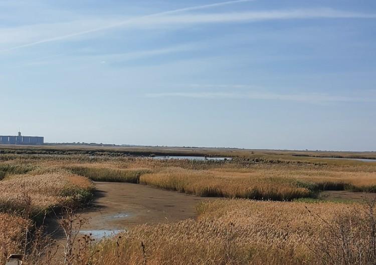 Уровень воды продолжает падать в Дону и в реках его бассейна. Фото: Виктория Лебедева, vk.com/rostovnadonu