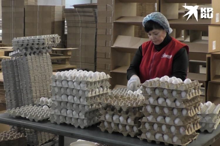 Когда бережливые технологии покажут свою эффективность, птицефабрика сможет нарастить объем производства на экспорт