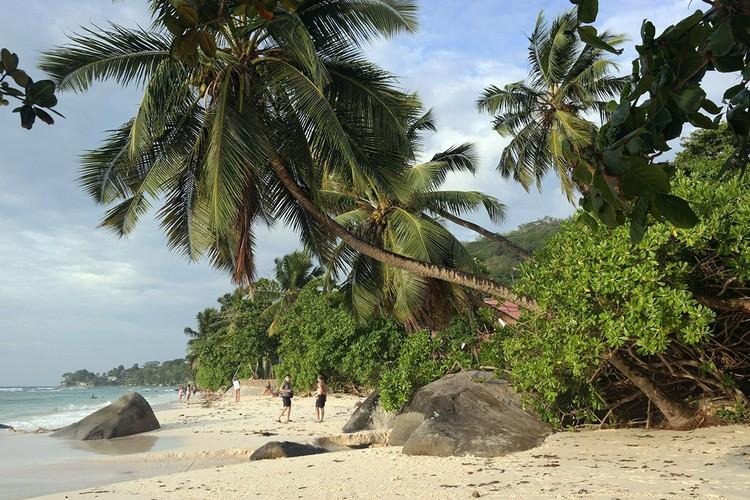 Сейшелы – отличное для зимнего отдыха место, с хорошими пляжам, качественными (и в основном дорогими) отелями, красивой природой, гигантскими черепахами...