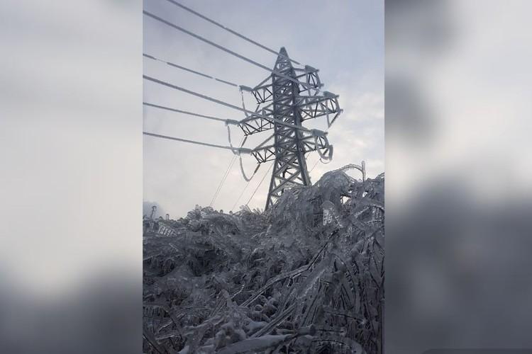 Ледяной апокалипсис в Приморье. Фото: Елена Клименко