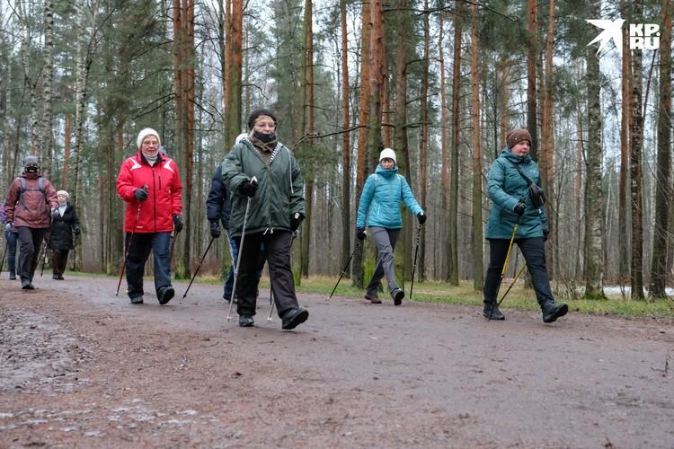 Каждую неделю в петербургских парках проходят бесплатные занятия по скандинавской ходьбе