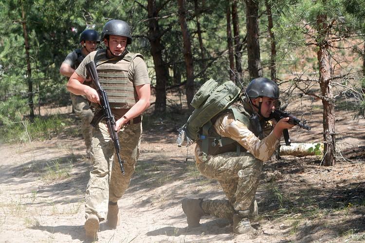 Не исключено, что Украина предпримет попытку взять реванш в Донбассе