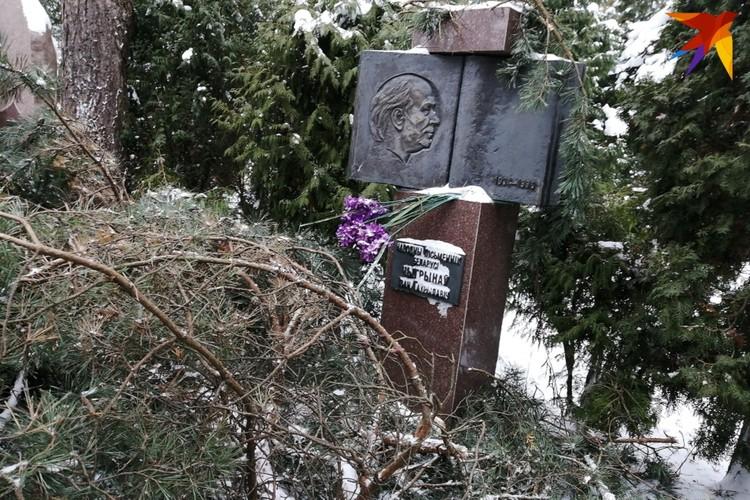 На могилу Ивана Чигринова свалился 5-метровая крона сосны. Фото: Наталья СВЕТЛОВА