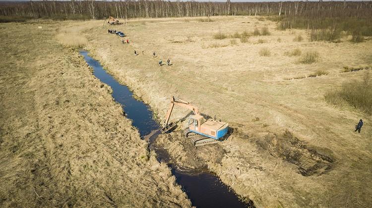 Так на болоте Дикое строили плотины. Фото: Иван Муравьев