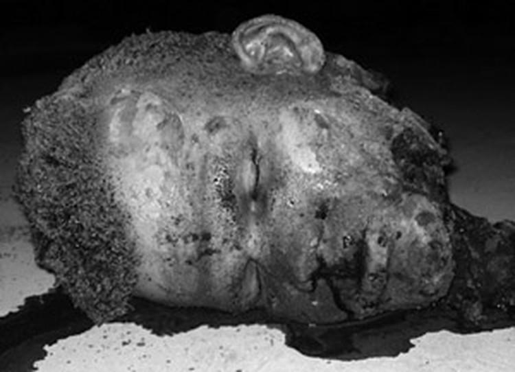 Помогите следствию опознать смертника, взорвавшего бомбу в Домодедово! Осторожно, шокирующее фото (по клику)
