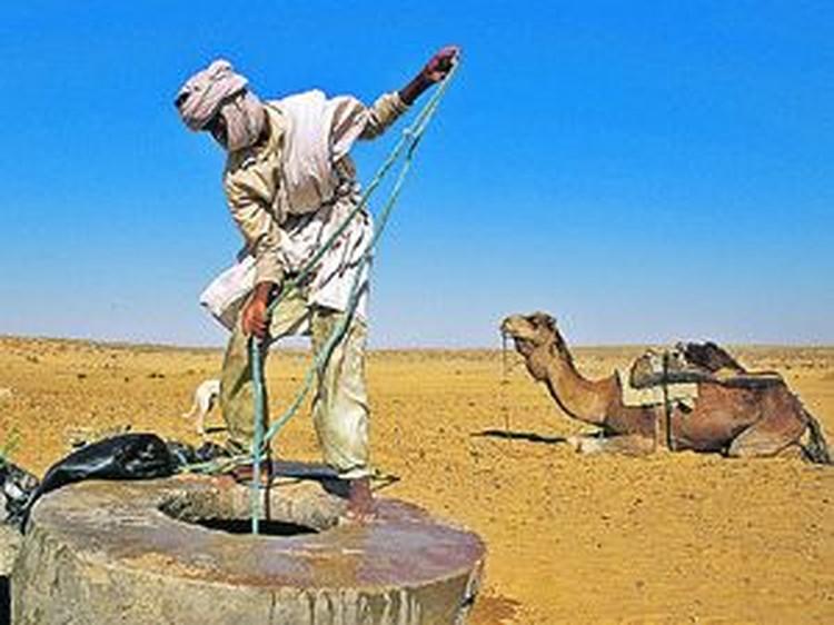 Пока еще в знойной Сахаре вода на вес золота. Но совсем скоро на месте этой величайшей пустыни вновь будут поля, луга, сады, как тысячи лет назад.