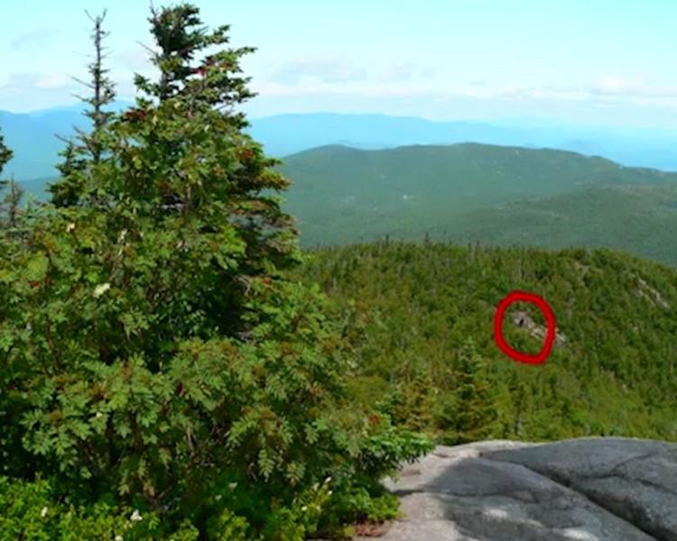 """Возможно, был убит тот самый """"сежный человек"""", который как раз два года назад  попал в кадр фотографа-анонима на склоне лесистой горы в США"""