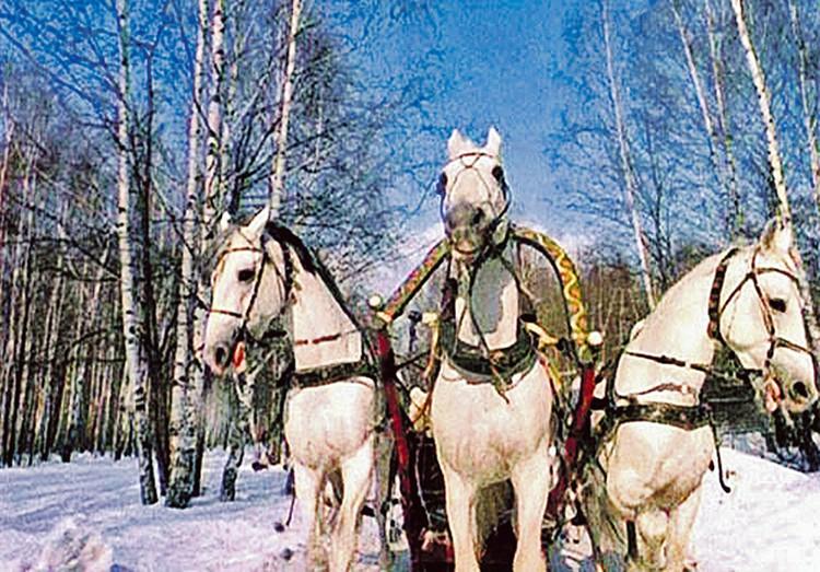 После выхода «Чародеев» песня «Три белых коня» стала гимном русской зимы!