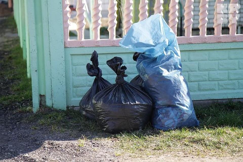 мусор не складывать картинки что благодаря симбиозу