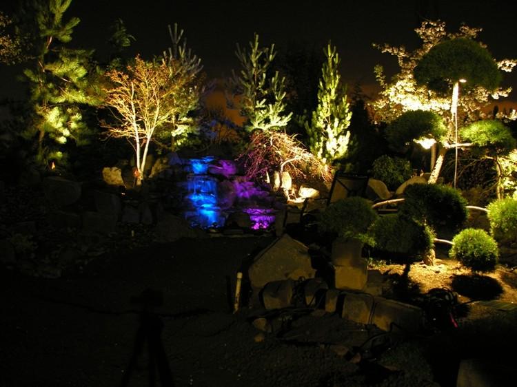 Если небольшие фонарики спрятать в небольших растениях, то по ночам они будут как бы светиться изнутри.