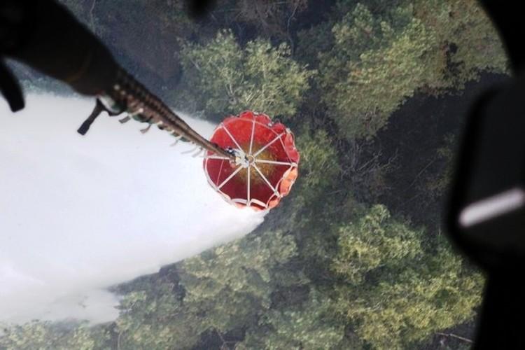 Вот так тушат лес с вертолета. Фото: МЧС.