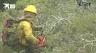 Лесные пожары в Аргентине